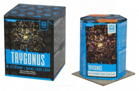 Argento Trygonus - 10 Schuss Batterie