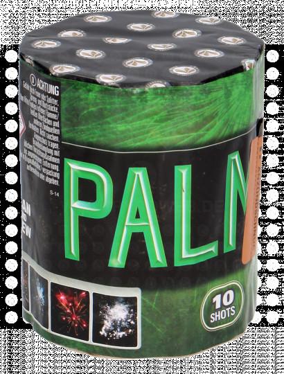 Lesli Palms, 10-Schuss-Batterie